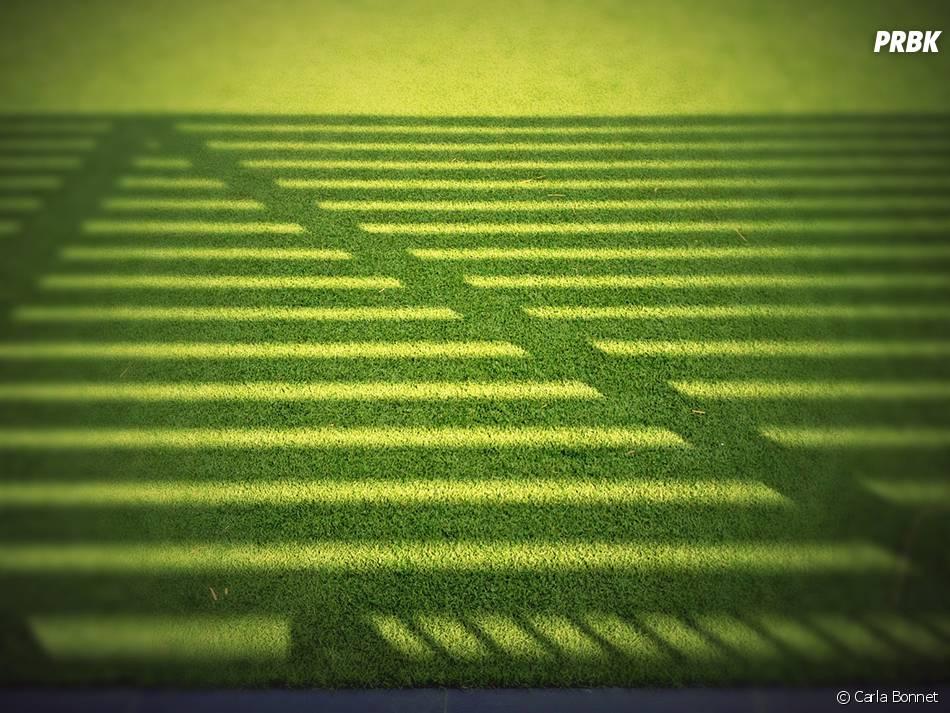 Um gramado, uma sombra e nada mais.