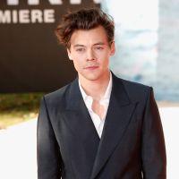 "Harry Styles vai à premiére de ""Dunkirk"" e domina os Trending Topics do Twitter!"