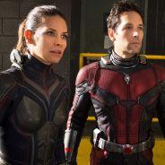 """De """"Homem-Formiga e a Vespa"""", Evangeline Lily não quer filme solo sobre sua personagem!"""