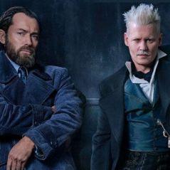 """Vida sexual de Dumbledore com Grindelwald será abordada em """"Animais Fantásticos 2""""!"""
