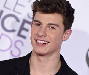 """Depois de ser capa da The Observer e receber título de """"Príncipe do Pop"""", entrevista com Shawn Mendes é divulgada"""