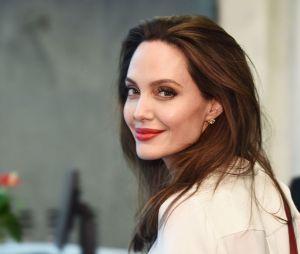 Angelina Jolie além de excelente atriz, é uma ótima pilota de avião