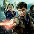 CCXP 2019: Harry Potter Experience é confirmada no evento
