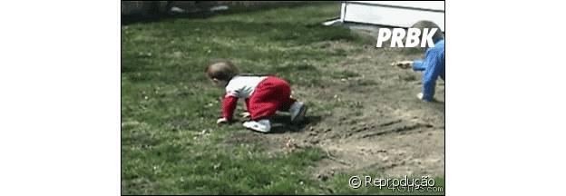 Cachorros correndo e derrubando bebê