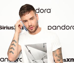 "Liam Payne convida Alesso para ""ser o Zayn"" do One Direction"