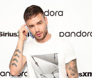 """Liam Payne convida Alesso para """"ser o Zayn"""" do One Direction"""