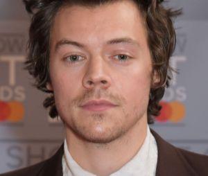 Harry Styles irá protagonizar novo filme de suspense de Olivia Wilde