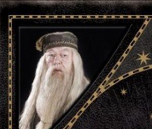 """""""Harry Potter"""":O livro dos personagens de Harry Potter"""