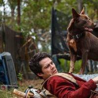 """Além de """"Amor e Monstros"""", com Dylan O'Brien, veja o que mais entra na Netflix em abril"""
