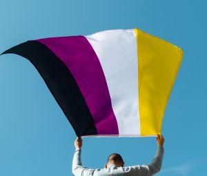 O gênero não-binário é representado pela bandeira nas cores preto, roxo, branco e amarelo