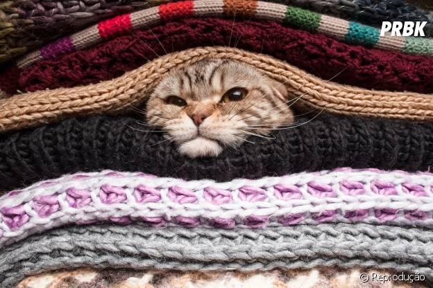 Dormir debaixo de uma pilha gigante de cobertores