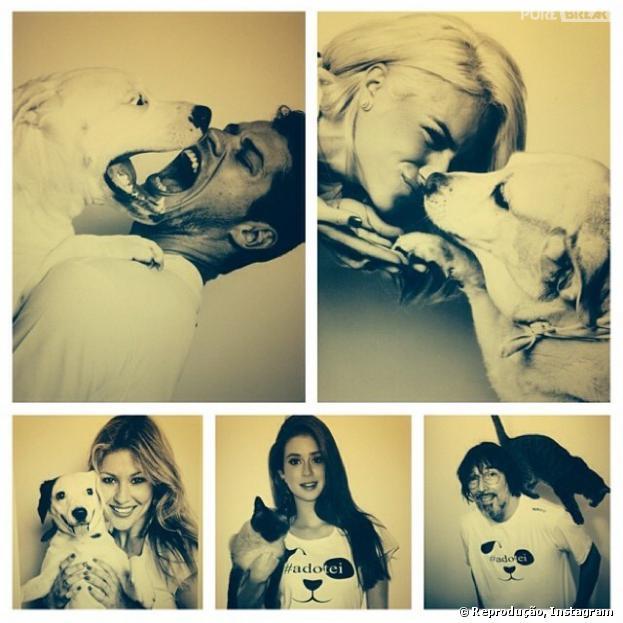 Bruno Gagliasso compartilha montagem em prol da adoção de animais em seu Instagram, nesta quinta-feira, 12 de dezembro de 2013