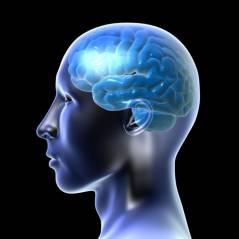 Conheça o Teste de Idade Mental e descubra a idade do seu cérebro!