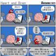 O coração é muito ansioso, ainda bem que o cérebro está aí para acalmá-lo