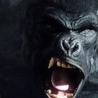 """Em """"The Flash"""": na 2ª temporada, Gorila Grodd está de volta no sétimo episódio!"""