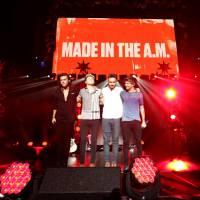 One Direction faz último show nos EUA antes da pausa na carreira! Confira fotos, vídeos e detalhes