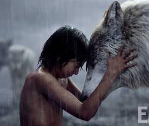 """""""Mogli - O Menino Lobo"""": amigo(a) dos animais, só quer saber de mato, vende a arte na praia"""