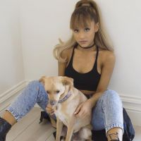 Ariana Grande e Calvin Harris em um só hit! Após Rihanna, cantora pode ser a nova parceria do DJ