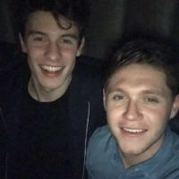 Niall Horan, do One Direction, e Shawn Mendes publicam foto juntos e fãs torcem por feat.!