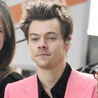 Harry Styles, do One Direction, prefere não definir sua sexualidade! Entenda