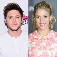 Niall Horan, do One Direction, e Shakira farão shows no Brasil, de acordo com jornal!