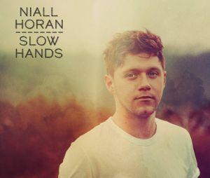 "Niall Horan virá ao Brasil divulgar os singles ""Slow Hands"" e This Town"""