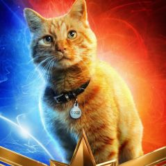 Parece que o gato de estimação da Capitã Marvel será a chave para salvar o MCU