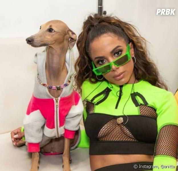 MTV Miaw 2019: Anitta ganhou dois prêmios e até o Plínio foi pra casa com um troféu