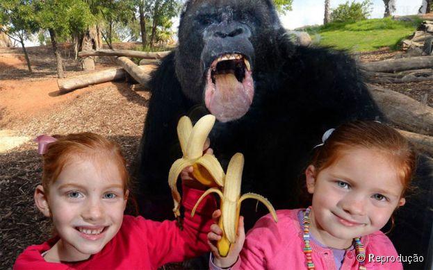 Banana pra você!