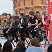Zayn Malik falta show do One Direction e fãs suspeitam de uso de drogas