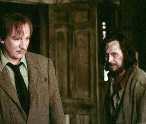 "Daniel Radcliffe diz que interpretaria Lupin ou Sirius Black na saga ""Harry Potter"""