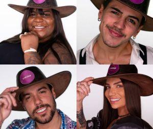 """""""A Fazenda 12"""": quem deve vencer o reality? Vote"""