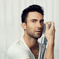 """Adam Levine, yeah! O gato é eleito o """"Homem Mais Sexy do Mundo de 2013"""""""