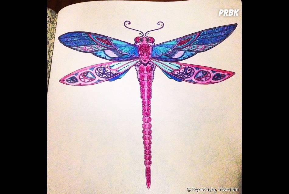 """Até uma libélula fica bonita no livro """"Floresta Encantada"""""""