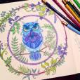 """A coruja com olhar penetrante do """"Floresta Encantada"""" ficou linda azul e lilás, né?"""