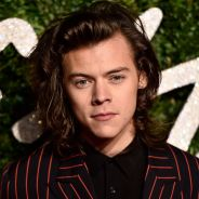 Harry Styles, do One Direction, fala sobre apoio dos fãs e novidades após a saída de Zayn Malik!