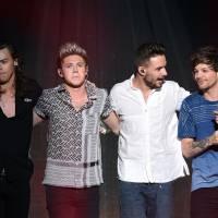 One Direction entra em pausa por 2 anos! Veja 7 dicas do que fazer durante esse tempo sem a boyband