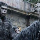 """Teaser de """"Planeta dos Macacos - O Confronto"""" faz aquecimento para novo trailer"""