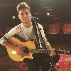 "Niall Horan, do One Direction, ganha remix explosivo do single ""This Town"" produzido pelo DJ Tiesto!"