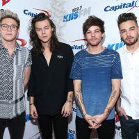 One Direction fatura U$100 milhões mesmo após pausa da boyband!