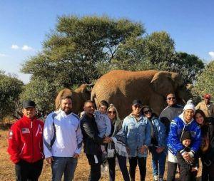 Bruna Marquezine, Neymar e amigos posam para foto com elefantes na África do Sul