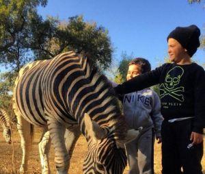 Davi Lucca, filho de Neymar Jr, acaricia filhote de zebra em viagem na África do Sul