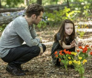 """De """"The Originals"""" e """"The Vampire Diaries"""", nova série derivada pode ser feita!"""