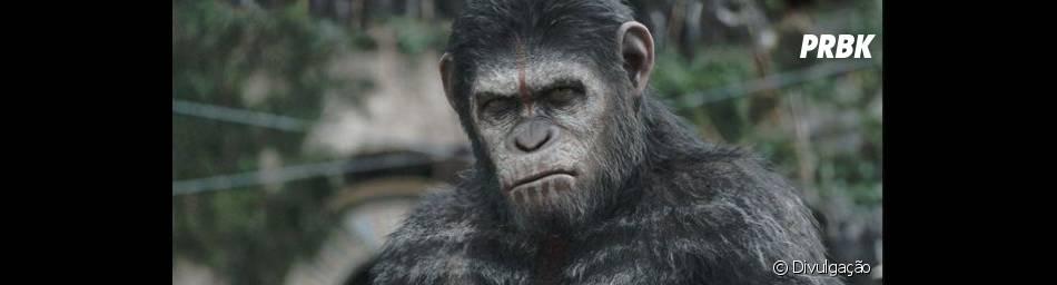 """""""Planeta dos Macacos 2 - O Confronto"""" traz a batalha épica entre homens e primatas"""
