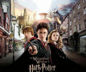O parque de Harry Potter em Orlando, nos EUA, vende vários produtos oficiais!