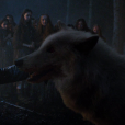 "De ""Game of Thrones"": Fantasma estará de volta na temporada de despedida da série"