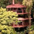 Casa na árvore com dois andares e tudo!