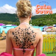 """Taylor Swift esmurrou com a letra de """"You Need To Calm Down"""". Veja tudo que ela disse"""