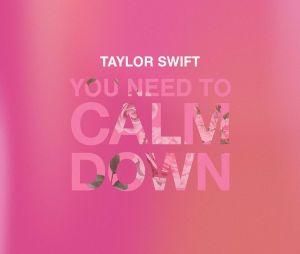 """Taylor Swift critica homofobia, machismo e muito mais em""""You Need To Calm Down"""""""