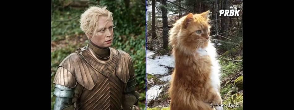 """A durona Briene (Gwendoline Christie), de """"Game of Thrones"""", também tem um gato à altura!"""